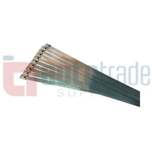 CABLE TIES 10PC 304 STAINLESS